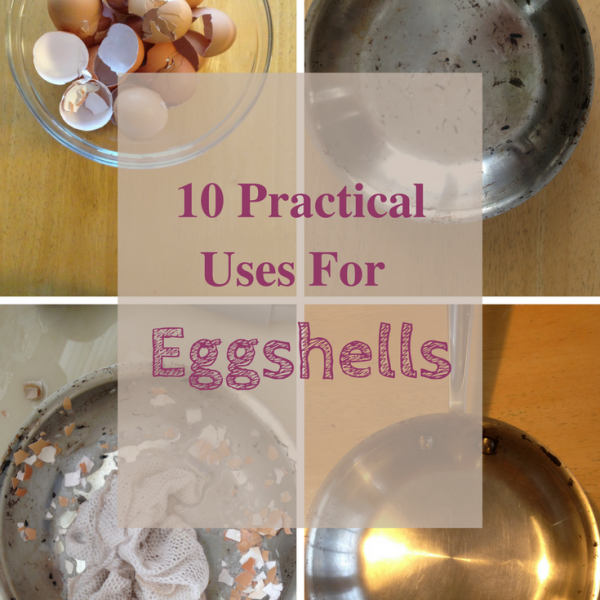 10 Practical Uses for Eggshells!
