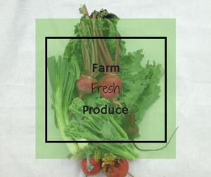 Fresh Produce from CSA