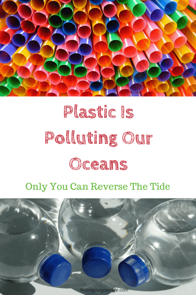 You Can Reverse Plastic Pollution