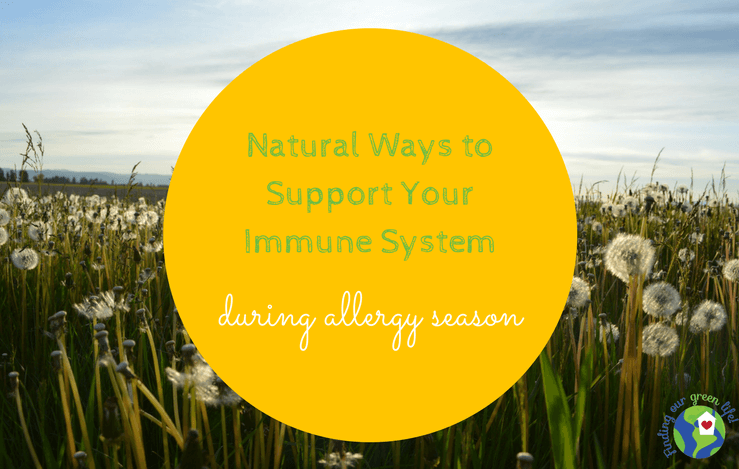 natural ways to combat seasonal allergies