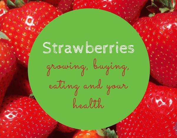 Strawberries – Growing, Buying, Eating, Health Benefits