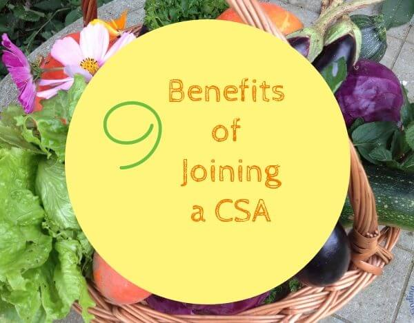 9 Totally Cool Benefits of Joining a CSA