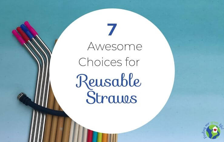 reusable straws with text overlay