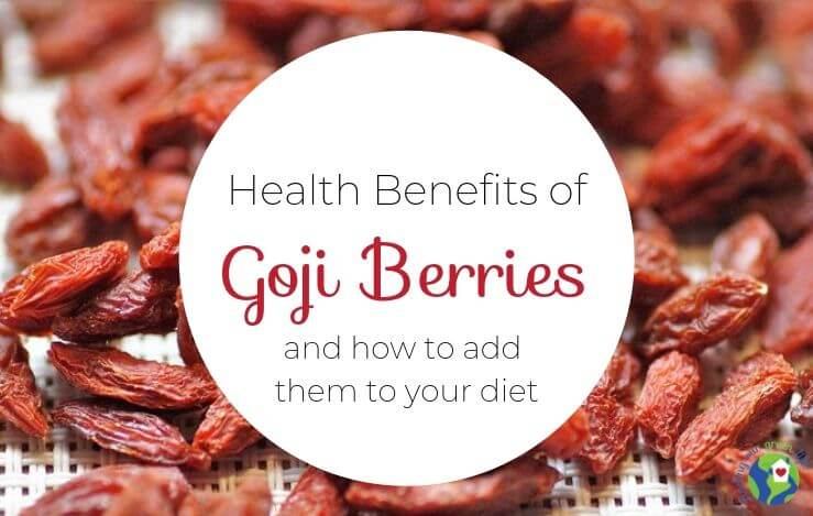 dried goji berries with text overlay