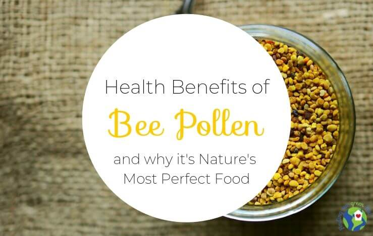 been pollen with health benefits of bee pollen text overlay