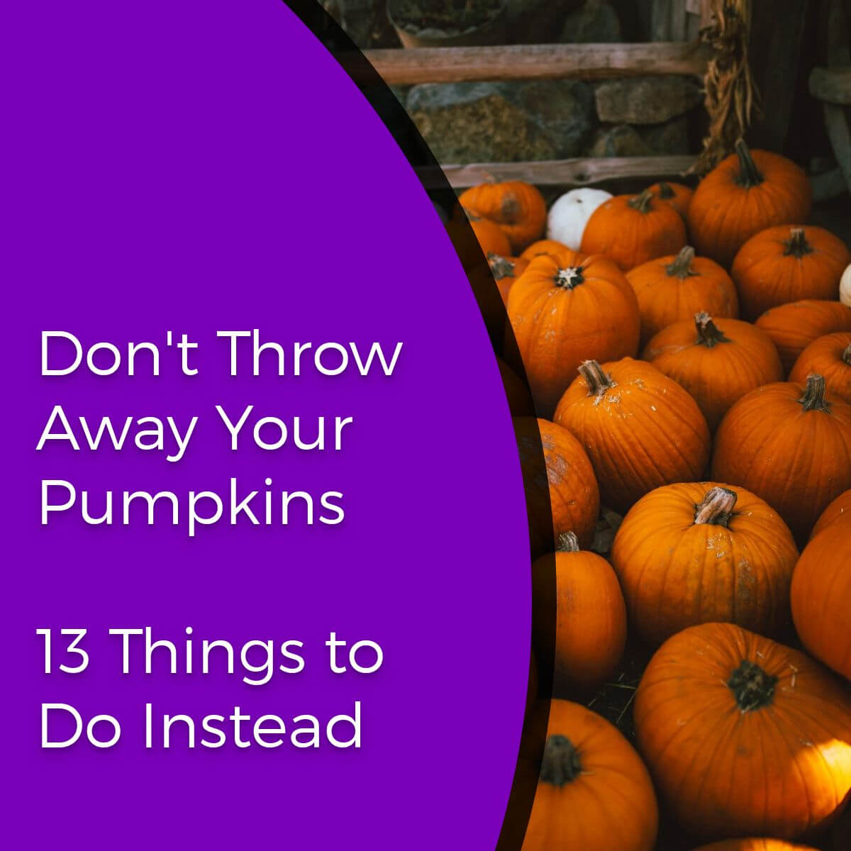 13 Things to Do with Pumpkins after Halloween