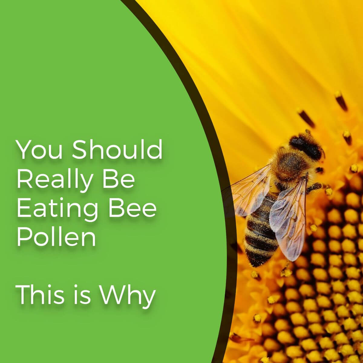 bee pollen flower with text overlay