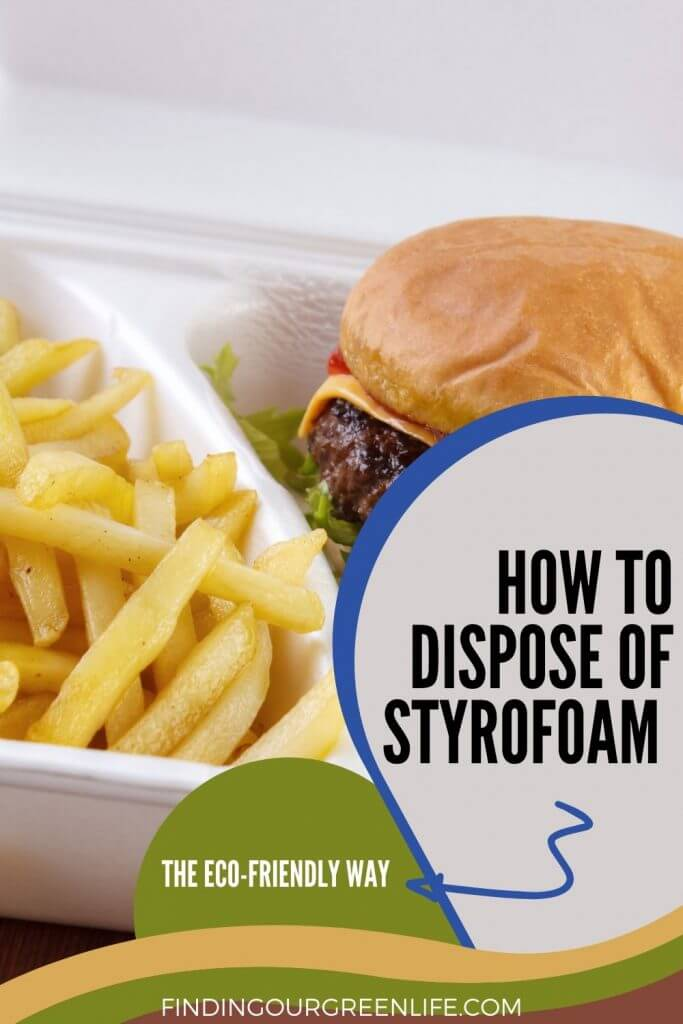 burger and fries in a styrofoam container