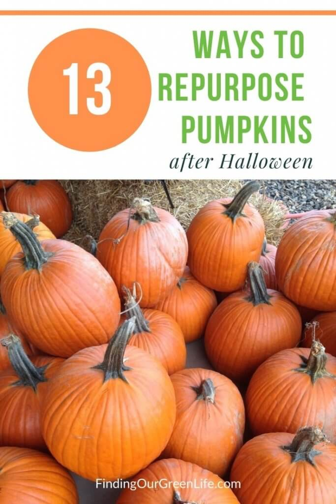 repurpose pumpkins after halloween with text overlay