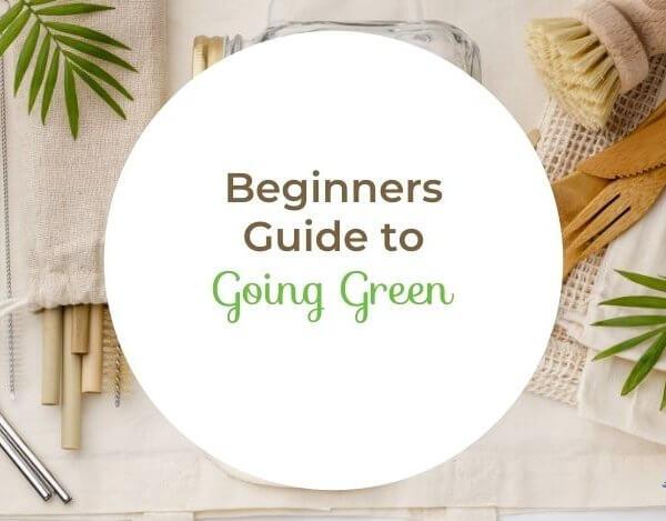 Going Green for Beginners