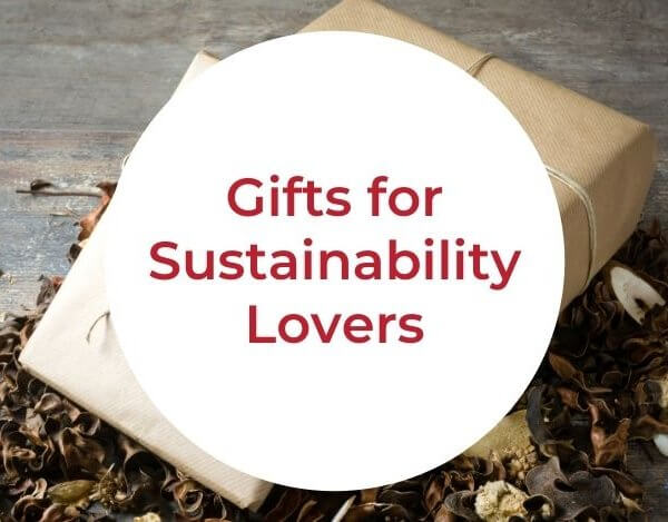 Best Gifts for Sustainability Lovers in 2020 | Gifts for People Who Don't Want Anything
