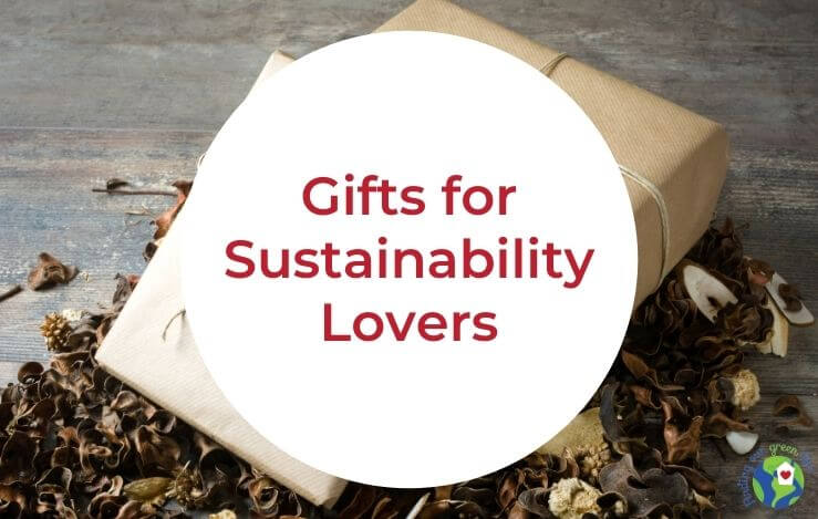 minimalist gift with gifts for sustainability lovers text overlay