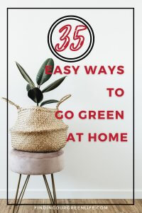 house plant in basket with easy ways to go green at home text overlay